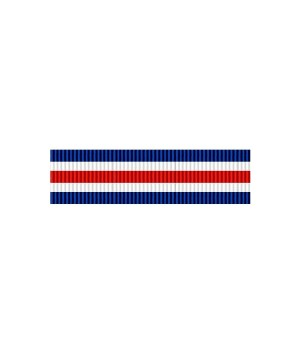 Стрічка закордонного навчання резерву армії США