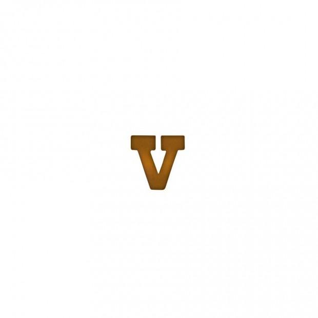 """Бронзова літера """"V"""""""