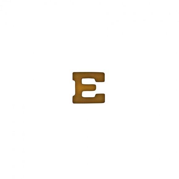 """Бронзовая литера """"E"""""""