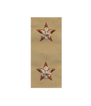 Набор нашивок US Army General Staff - Desert DCU