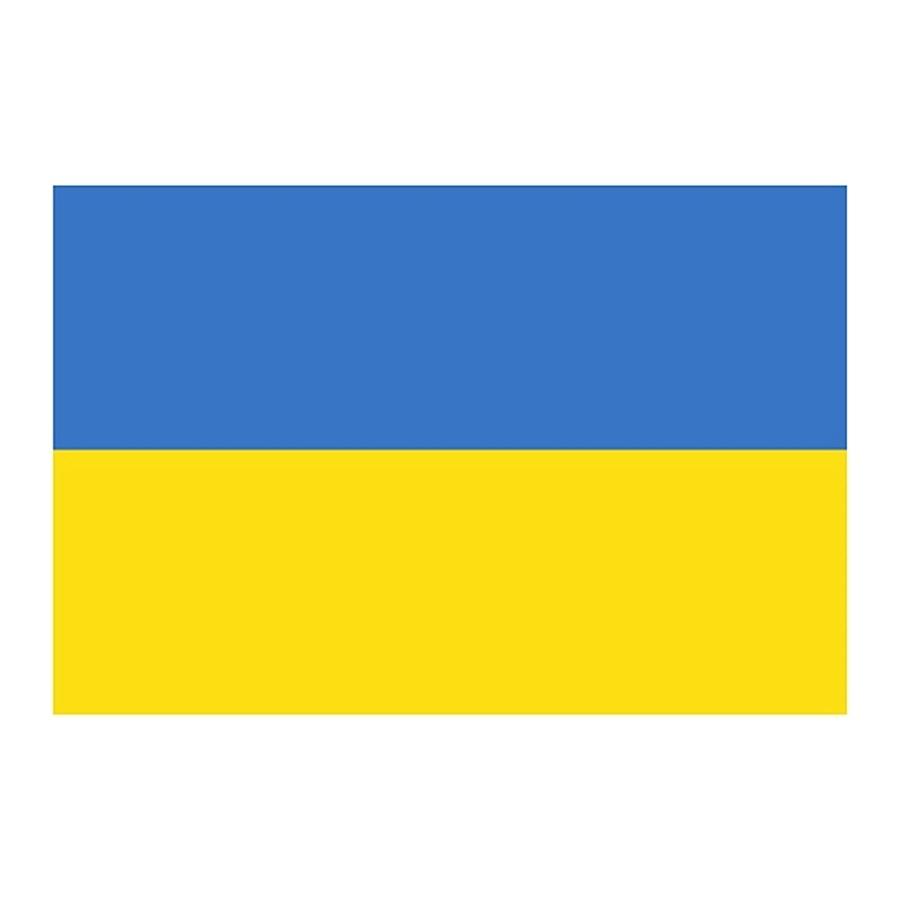 Флаг Украины | магазин Штурм™