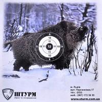 Мішень КАБАН, 25x25cм - 25 шт.